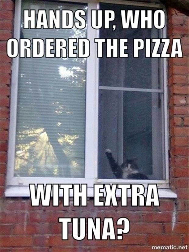 who ordered the pizza with extra tuna?