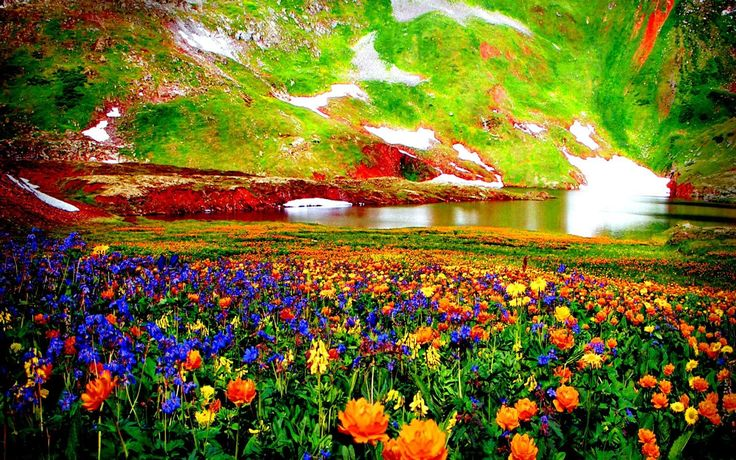 colorful valley wallpaper - photo #41
