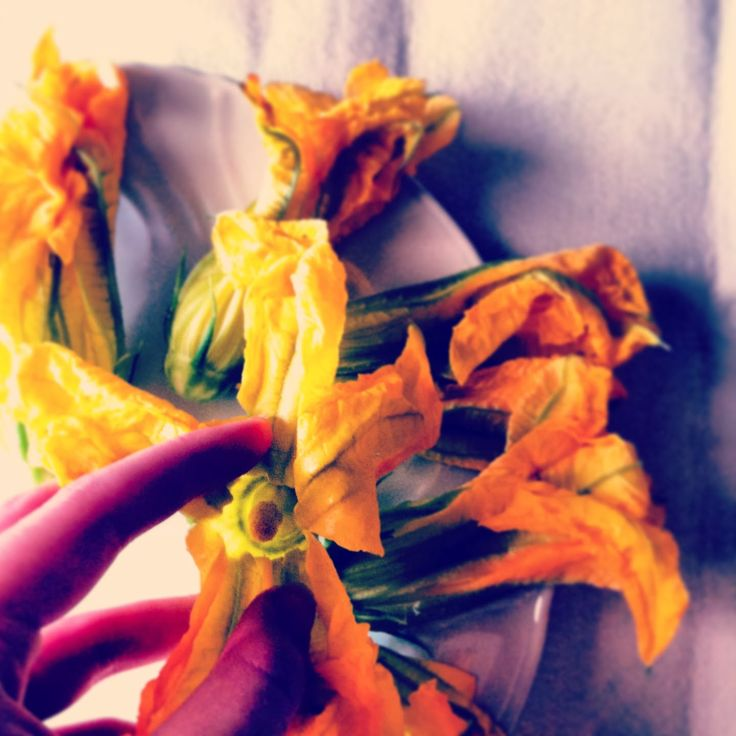 Courgette flowers from the garden! For the recipe check out http://mozzarelladiaries.blogspot.it/
