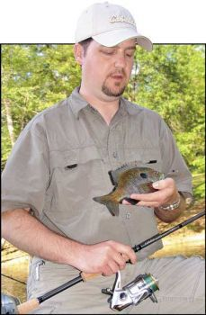 doughball recipe for bluegill fishing