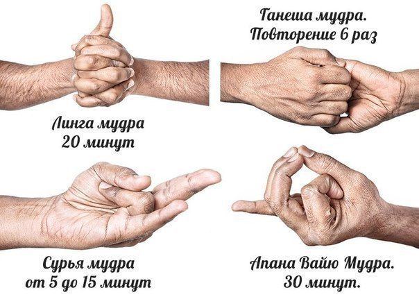 1. Линга Мудра. Практикуйте ее натощак не менее 20 минут. Сядьте в позу лотосы, вытяните руки вперед, сцепите пальцы в замок. Поднимите большой палец левой руки к потолку. Используя большой и указательный пальцы правой руки оплетите большой палец левой руки. Вдохните и выдохните. 2. Ганеша Мудра. Сядьте в падмасану. Вытяните руки и положите на бедра. Поднимите обе руки и держите