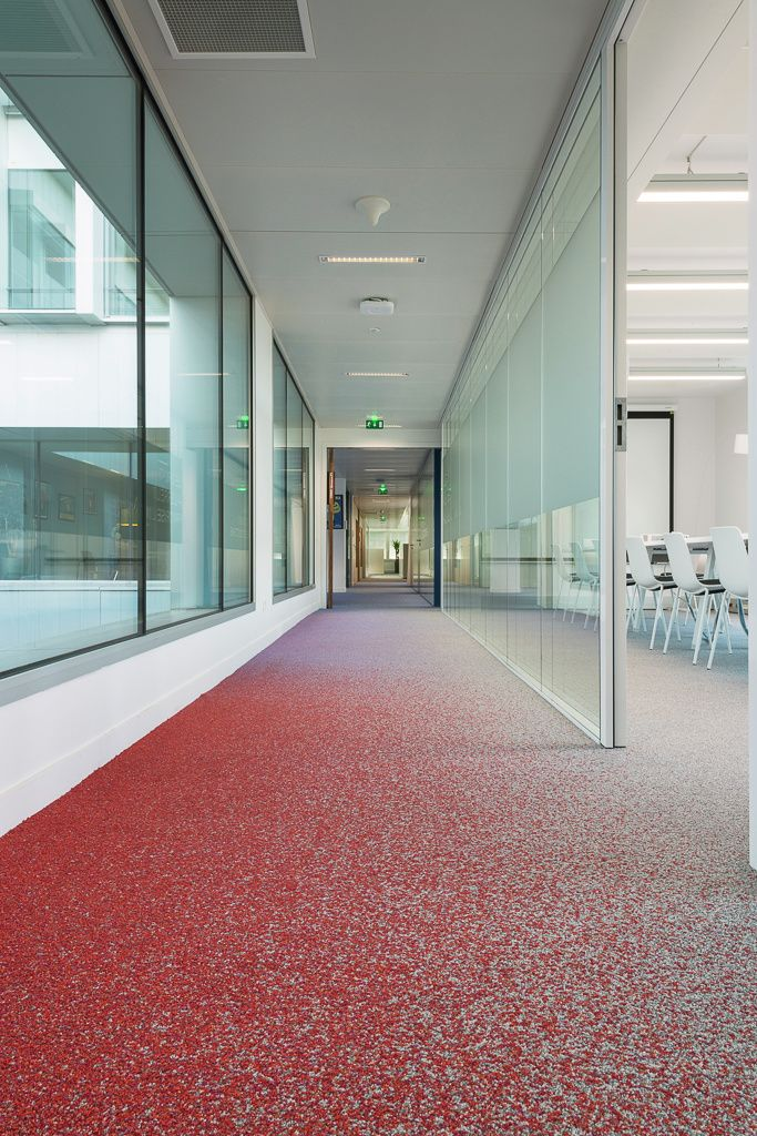 Location: Orangina, France.  #Carpet by #egecarpets