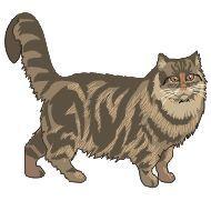 Lukujonotaitojen harjoittelua esim. pistetyöskentelyyn: The cat is looking for…