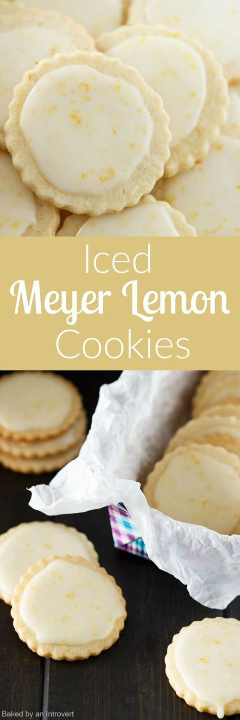 These Iced Meyer Lemon Cookies are made from scratch and taste just like a Meyer lemon! The perfect winter citrus cookies! via @Baked by an Introvert