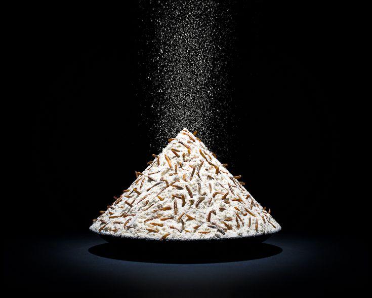 PROJECTS One Third | Flour | Klaus Pichler