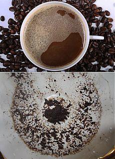 Гадание на кофейной гуще: заглянем в чашку и в будущее?   Мир вокруг нас