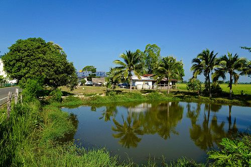 awesome Morning in a village in Surin province, Thailand Check more at http://www.discounthotel-worldwide.com/travel/morning-in-a-village-in-surin-province-thailand-2/