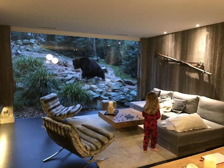 Die besten 25+ Safari schlafzimmer Ideen auf Pinterest Safari - schlafzimmer afrika style