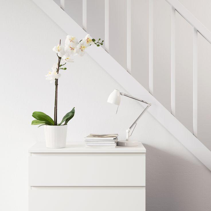 FEJKA kunstplant   IKEA IKEAnl IKEAnederland designdroom inspiratie wooninspiratie interieur wooninterieur decoratie decoratief accessoires accessoire kamer woonkamer planten plant bloemen bloem