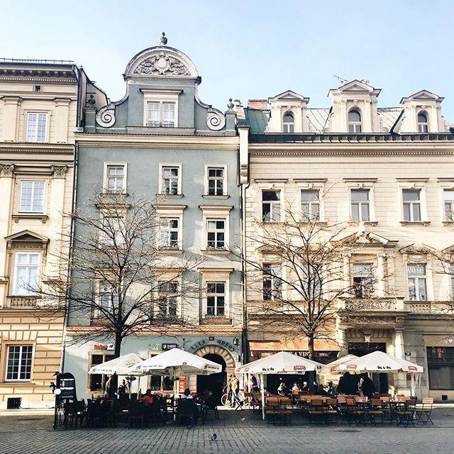 На улице +15, красота 💛☀️💫#vscocam  #Poland #Krakow #vscokrakow #vscopoland #polska #krakow_gram #europe #eurotrip #traveleurope #vscoeurope #visitkrakow #TLPicks #welovecracow #krk #фотографвевропе #cracow #igerskrakow #igerspoland #krakowplaces  #europe_gallery #typ_krakow #vzcokrakow #краков #cracov #krakov #польша