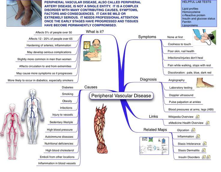 arterial tree of human body pdf