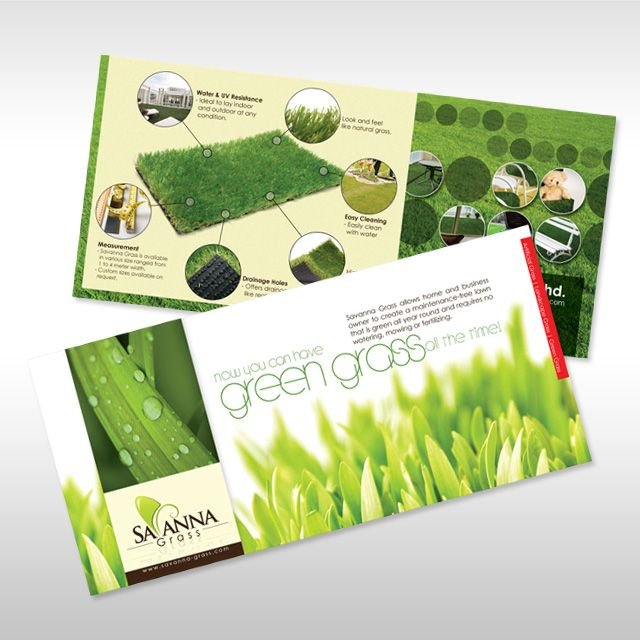 Leaflet Design for Savanna Grass