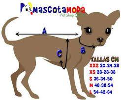 Resultado de imagen para medidas perro chihuahua mini toy