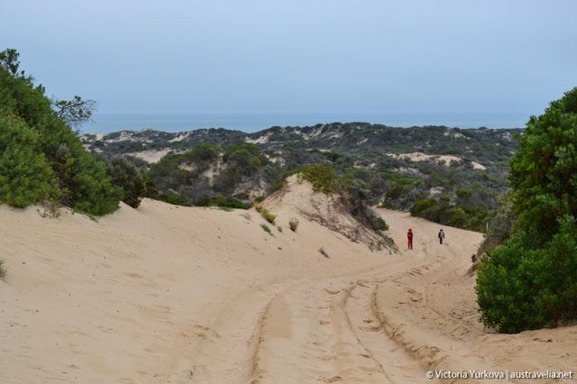 Austravelia: 42 Mile Crossing Campground in Coorong National Pa...