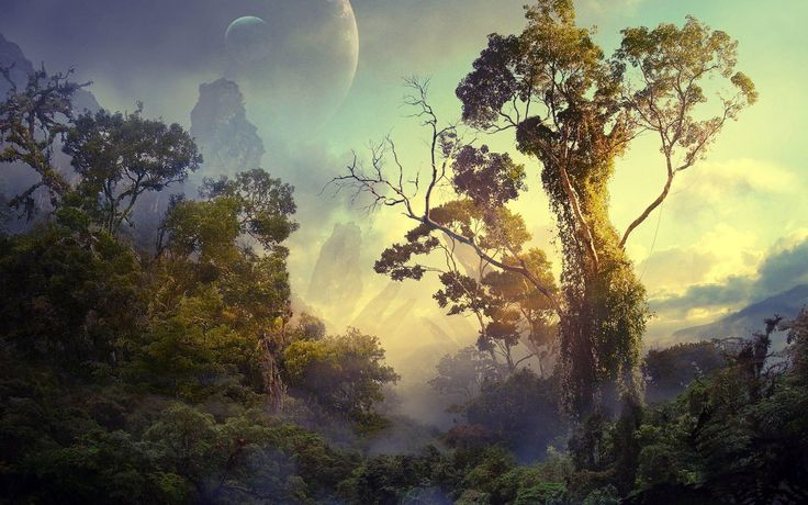 General 1920x1200 forest planet trees tropical clouds space Bushes sky