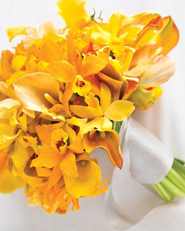 Silver ribbon encircles this clutch of exotic mini cattleya orchids, yellow and apricot calla lilies, and blush-colored tulips