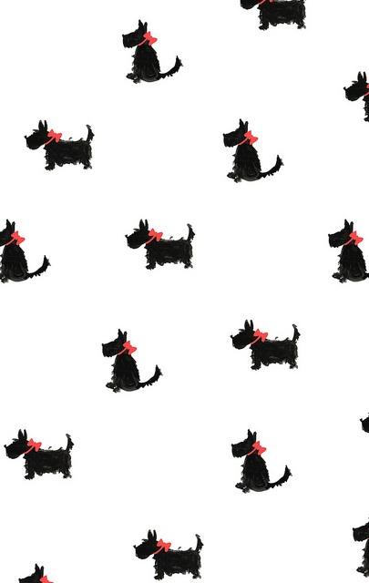 Yorkies ★ iPhone wallpaper