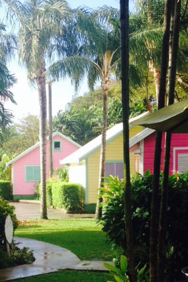 Holetown Barbados 252 best Beautiful Barbados images