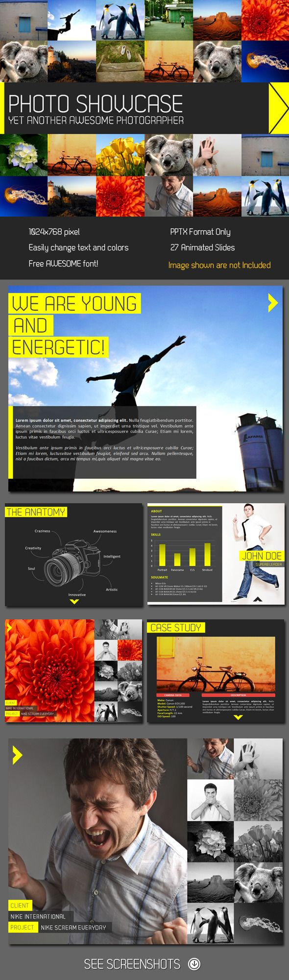Showcase PowerPoint Presentation  #studio #professional #portfolio • Click here to download ! http://graphicriver.net/item/showcase-powerpoint-presentation/245946?s_rank=764&ref=pxcr