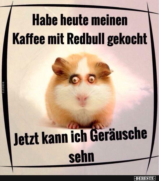 Seltsam? Warte, bis du Menschen siehst, die wie gruselige Hamster aussehen!!! …