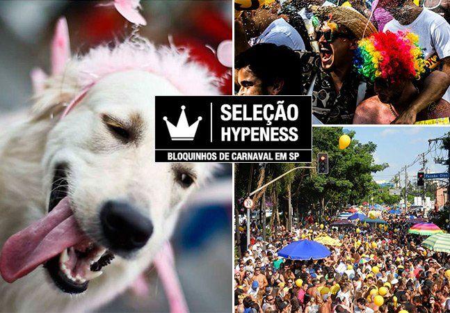 """No Brasil, o ano só começa mesmo depois do Carnaval, ou seja, o mês de janeiro só serve como um """"esquenta"""" para a data. Em São Paulo, a expectativa se concentra nos bloquinhos de Carnaval de rua, que seguem em animados desfiles por várias regiões da capital paulista. Um dos feriados mais aguardados do ano, o Carnaval brasileiro comprova que aqui é, de fato, uma terra de diversidade, porque ao contrário do que muitos pensam, não é só a terra do samba, não. Tem bloquinhos para todos os gostos…"""