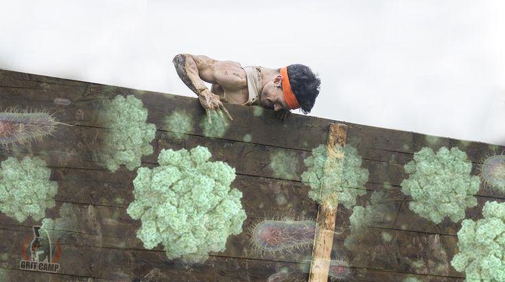 Obstacle mud race dangers bacteria disease