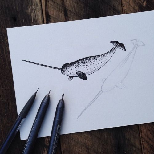 In progress. Always enjoy drawing these guys. #narwhal #art...