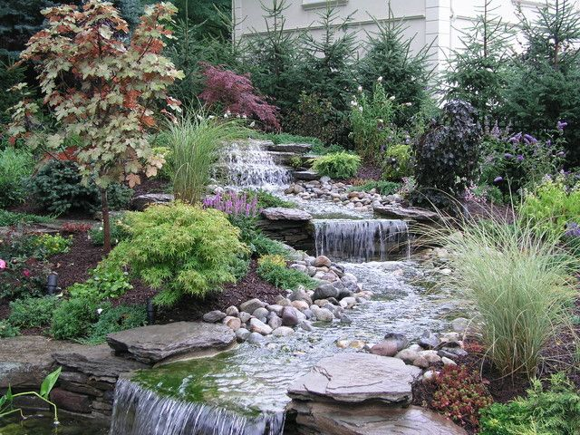 63 best images about gardening ponds and streams on pinterest for Koi pond maintenance near me