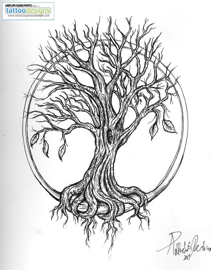 Tree Of Life Tattoo Stencil 1000 Images About Tattoos On Pinterest
