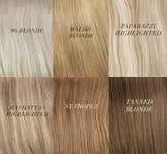 Image result for different shades of blonde