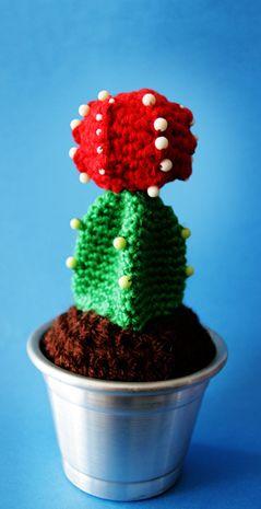 Cactus :-)