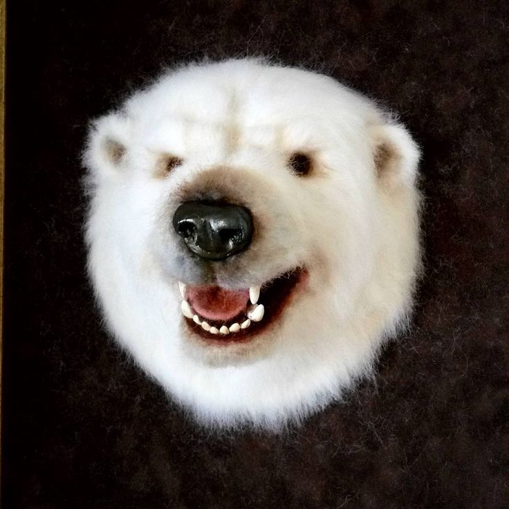 Закончила самую большую работу . Голова белого медведя. работа продается, work  on  sale.  #polarbear #bear #needlefeltedanimal #needlefelting #felted #медведь#белыймедведь #таксидермия #ярмаркамастеров #toys_gallery #Челябинск###