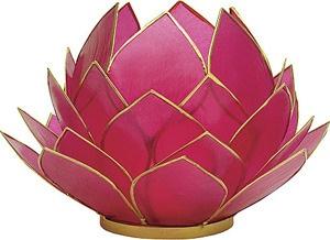 lotus!!