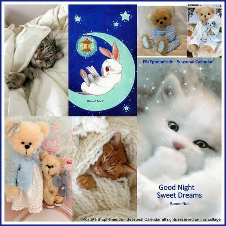 Mardi 20 mars  6ee76b707d54aaa18937665926b6412f--moodboards-collages
