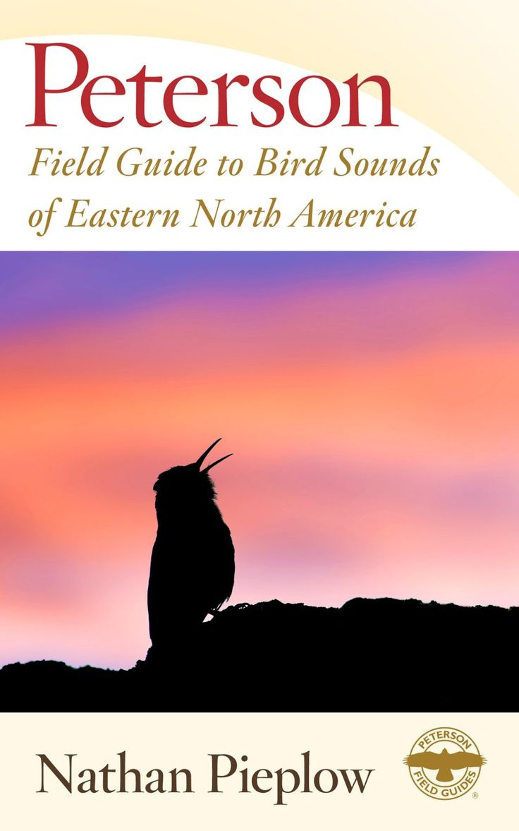 Peterson Field Guide To Bird Sounds Of Eastern North America, By Nathan  Pieplow