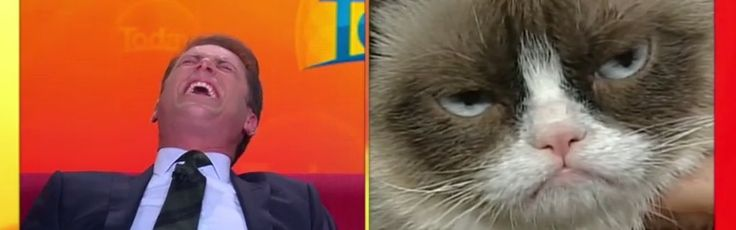 Australian News Anchor Loses it On-Air Over Grumpy Cat