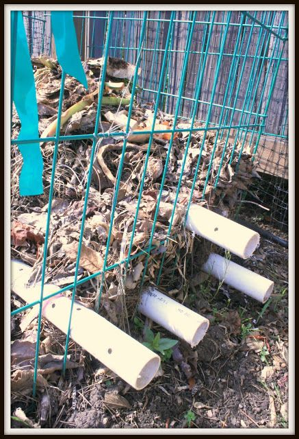 great idea... no need to turn the compost!  PVC pipes to provide air to the compost heap!