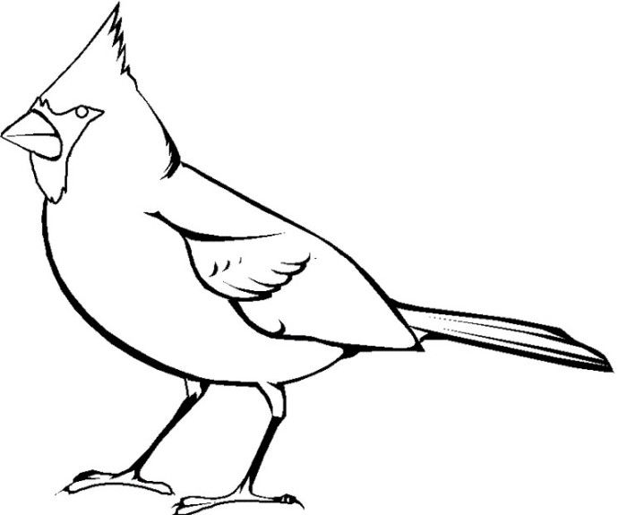Blessed John Henry Newman Cardinal Coloring Page