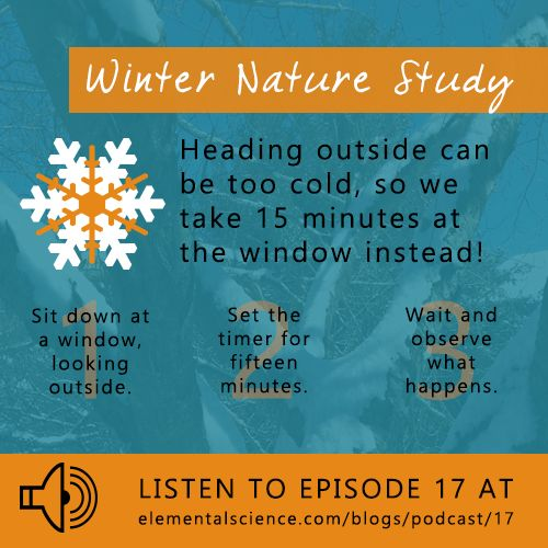 Nature study during the winter months – heading outside can be too cold, so we take 15 minutes at the window instead!