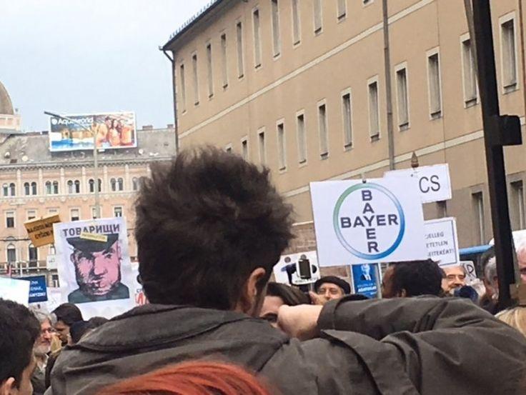 Orbán és Oroszország mellett szállt síkra a Kétfarkú Békemenet - PP