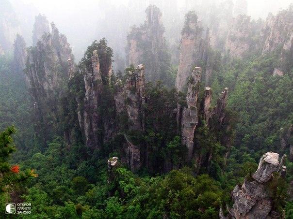 """Национальный парк Чжанцзяцзе в китайской провинции Хунань.    Парк знаменит своими гигантскими скальными столбами, которые вдохновили создателей известного фильма """"Аватар"""" на создании """"летающих"""" скал Пандоры. Эти скалы - результат многих тысяч лет эрозии. В честь фильма одна из самых высоких скал парка получила название """"Avatar Hallelujah"""" в январе 2010 года."""