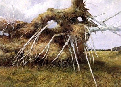 Uprooted by Gerald Squires