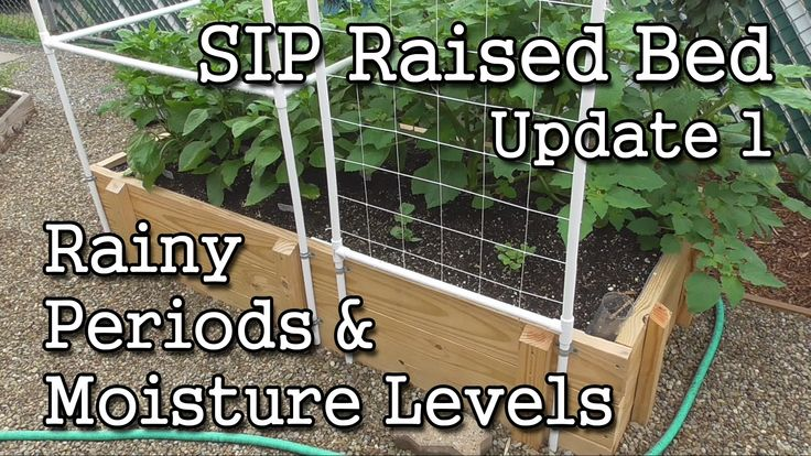 SIP Raised Bed (Update 1) + Self-Watering Containers + How-To Monitor Mo...