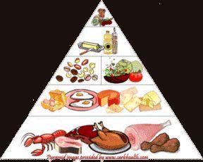 Het Atkinsforum - Fase 1 van het Atkinsdieet