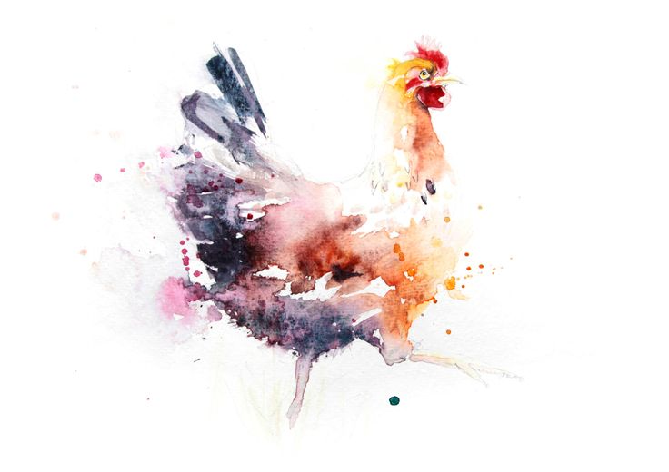 Contemporary LIMITED edition print of my original watercolour CHICKEN  Printed using epson Chroma K3 pigments on archival 315 gsm paper. by JenBuckleyArt on Etsy https://www.etsy.com/uk/listing/227547402/contemporary-limited-edition-print-of-my