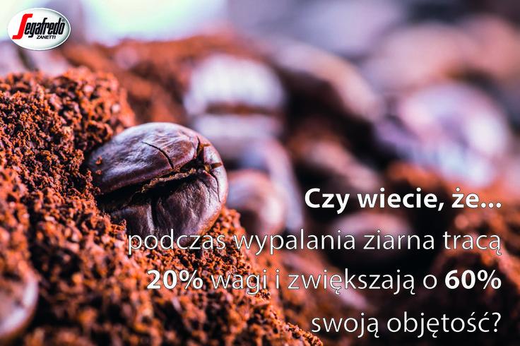 Proces palenia ziaren to jeden z najważniejszych etapów obróbki, w czasie którego kawa nabiera intensywnego aromatu i pełnego smaku. #PalenieKawy #ZiarnaKawy #KawoweCiekawostki
