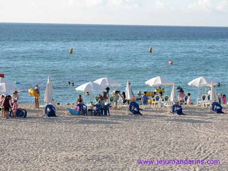 Gwakji Beach 곽지 해수욕장 - Jeju Mandarins