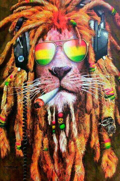 https://www.youtube.com/watch?v=c-XJTQtwYt8 Rasta Lion
