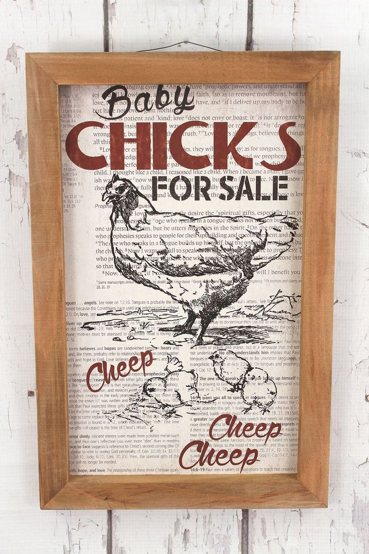 WHOLESALE .....15.75 x 10.25 'Baby Chicks For Sale' Framed Wood Sign