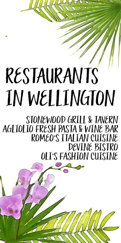 There are many great restaurants in the village of Wellington, FL! 1) Stonewood Grill & Tavern; 2) Agliolio Fresh Pasta & Wine Bar; 3) Romeo's Italian Cuisine; 4) Devine Bistro; 5) Oli's Fashion Cuisine http://www.waterfront-properties.com/blog/5-great-restaurants-in-wellington-fl.html #wellingtonfl #wellington #wellingtonrestaurants #wellingtondining